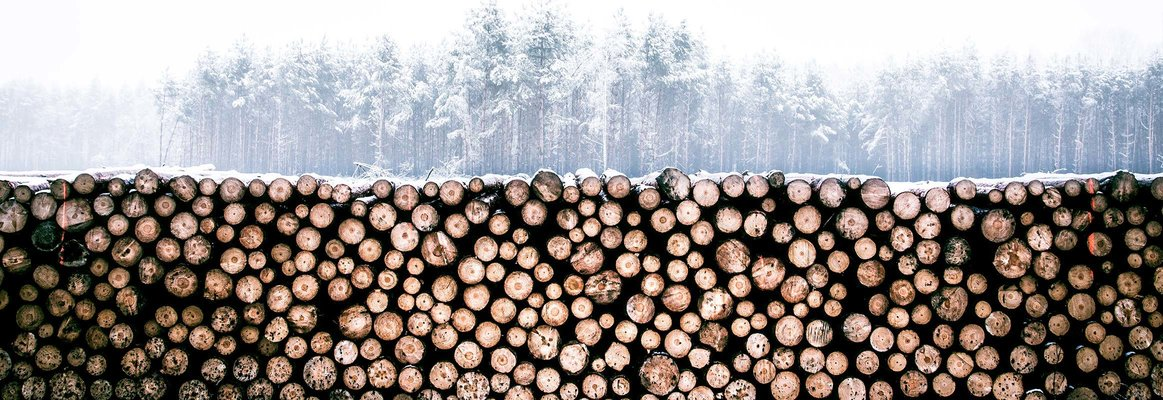 Volvo Trucks solutions for forestry & timber transport