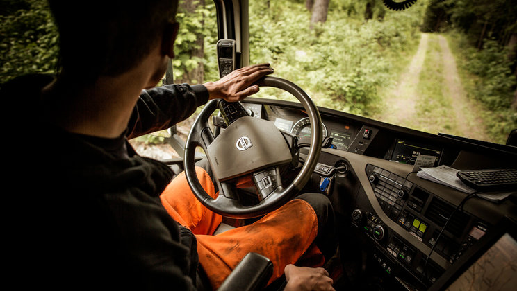 Driver steering his truck in the forest.